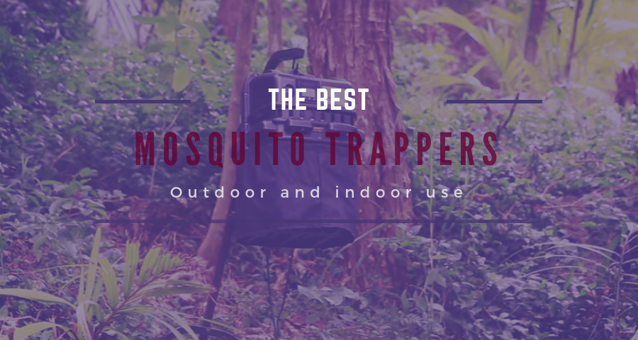 best mosquito trapper